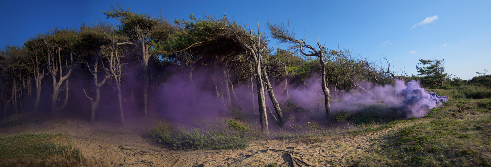 Flood | David Ogle, 2015 | purple smoke pyrotechnics | landscape installation (high resolution digital video installation: 3min36sec) | part of Loomings: produced by: Mark Devereux Projects, videography by: Andrew Brooks | image: courtesy of the artist