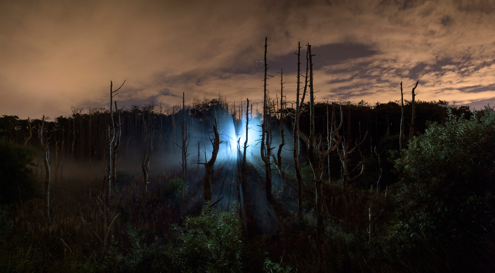 Of the Whale | David Ogle, 2015 | white smoke pyrotechnics, white light | landscape installation (photograph) | part of Loomings: produced by: Mark Devereux Projects | image: Andrew Brooks