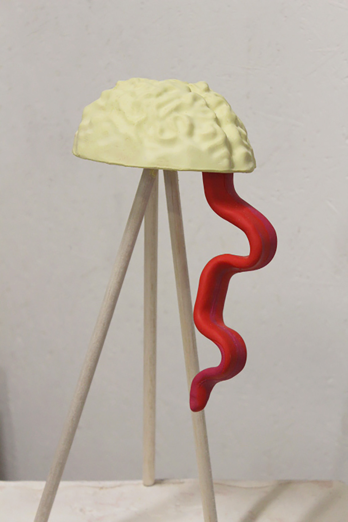 Brain Tongue | Pippa Eason | 2019 | plaster, wood, fimo | 20cm x 40cm | image: courtesy of the artist